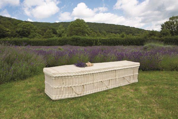 Cane Coffin
